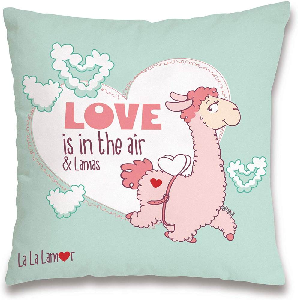 Nici 'Love is in the air' Kissen